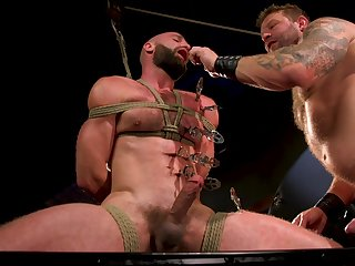 Husky men in scenes of harsh butt gender BDSM